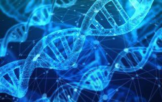 ADN para determinar el código de barras