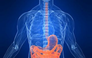How to improve butyrate in intestine
