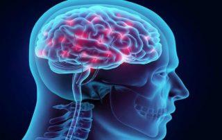 Vinpocetine memory booster